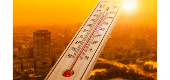 Boiling: Responding to Europe's Record Heat Wave